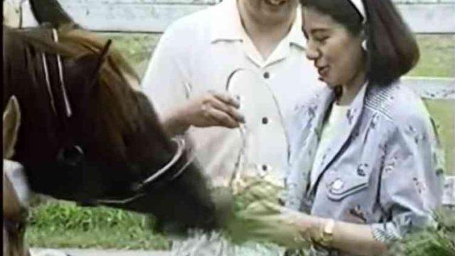 雅子様と馬との交流